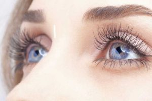 What Should Be Used Before Putting Eyeshadow On Eyelids? Essential Points to Know!!!